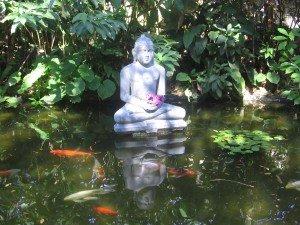 Buddha Pond ©Cucinell 2006